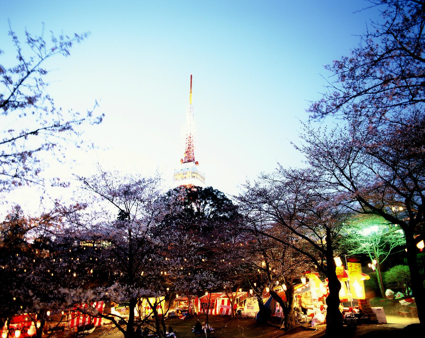 八幡山ぼんぼり点灯&宇都宮タワーライトアップ