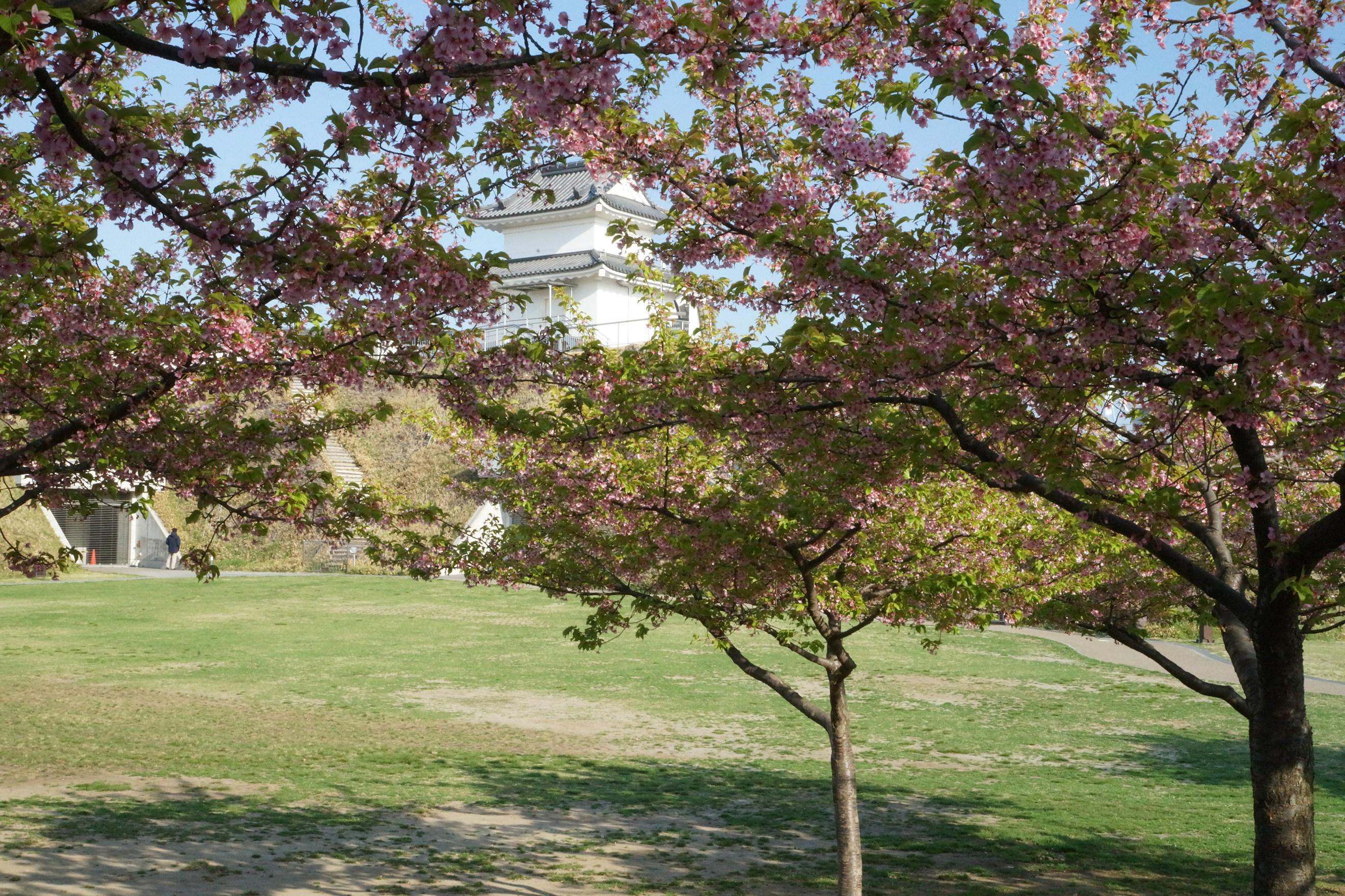 宇都宮城址公園2018年3月31日更新