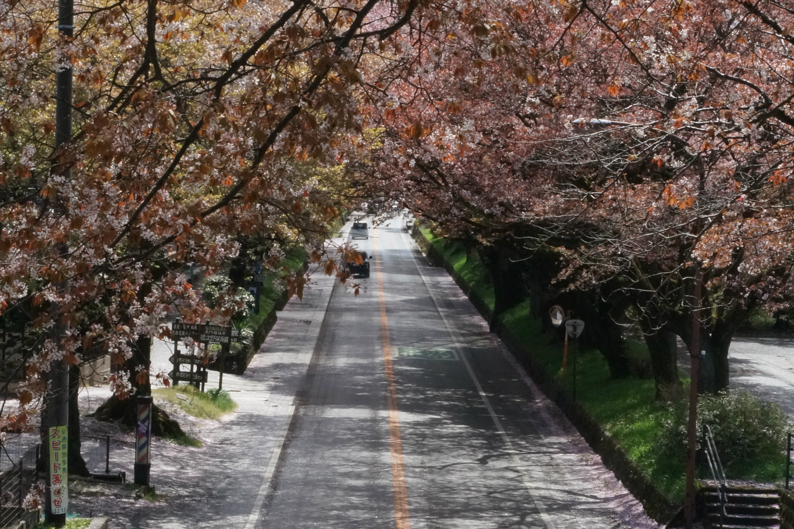 日光街道2018年4月8日更新